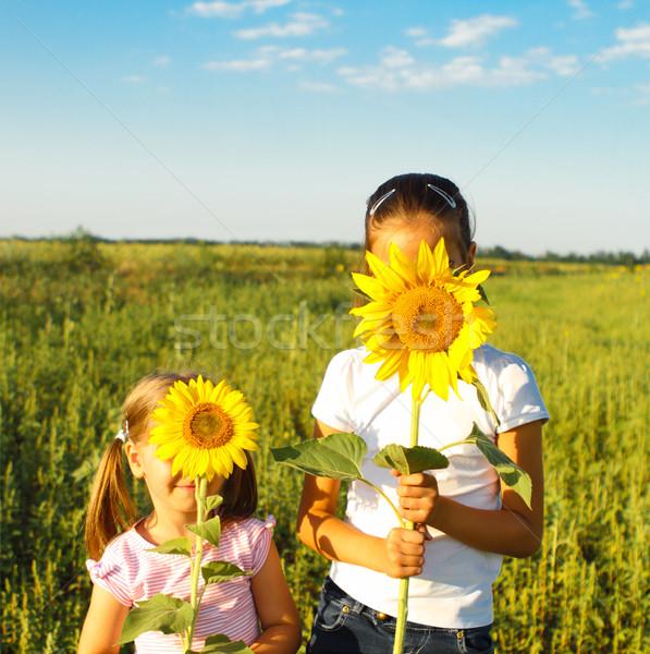 Two cute litle girls hiding behind sunflowers Stock photo © dashapetrenko