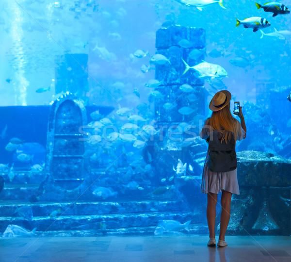 Nő elvesz kép nagy akvárium Dubai Stock fotó © dashapetrenko