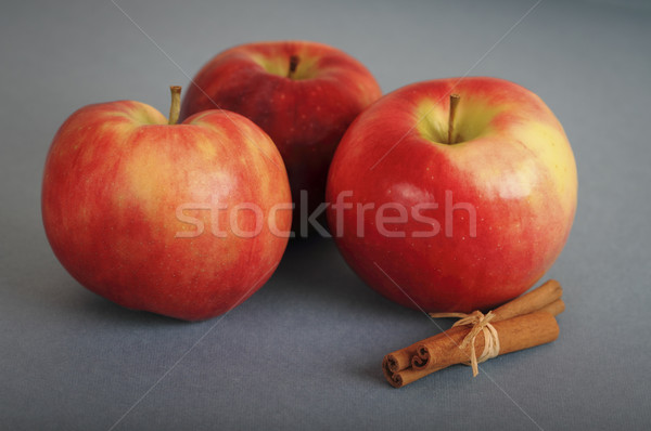 Arbre rouge pommes cannelle gris nature Photo stock © dashapetrenko
