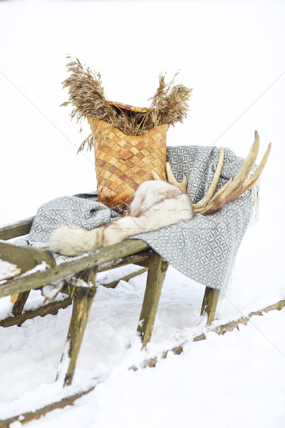 Old dog sled in tundra Stock photo © dashapetrenko