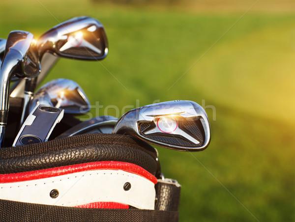 Golfütők zöld mező nyár naplemente sport Stock fotó © dashapetrenko