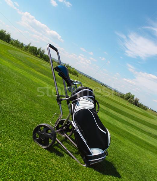 Golfütők zöld fű fű sport kék klub Stock fotó © dashapetrenko