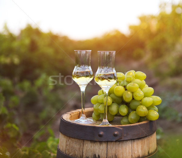 Two glasses of liquor or grappa with bunch of grapes  Stock photo © dashapetrenko