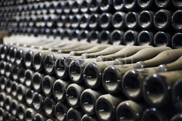Wine or champagne bottles aged in cellar Stock photo © dashapetrenko