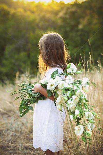 Сток-фото: девочку · луговой · белый · Летние · цветы · Cute