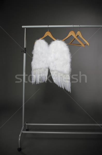 Branco asas cinza casa foto Foto stock © dashapetrenko