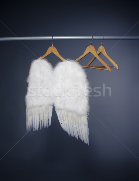 White wings Stock photo © dashapetrenko