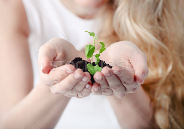 Stock photo: Young woman holding young plant in her hands