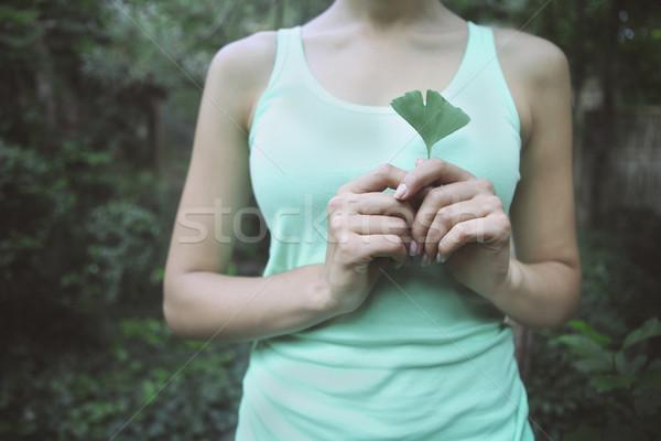 Woman holding Ginkgo biloba leaf in her hand Stock photo © dashapetrenko