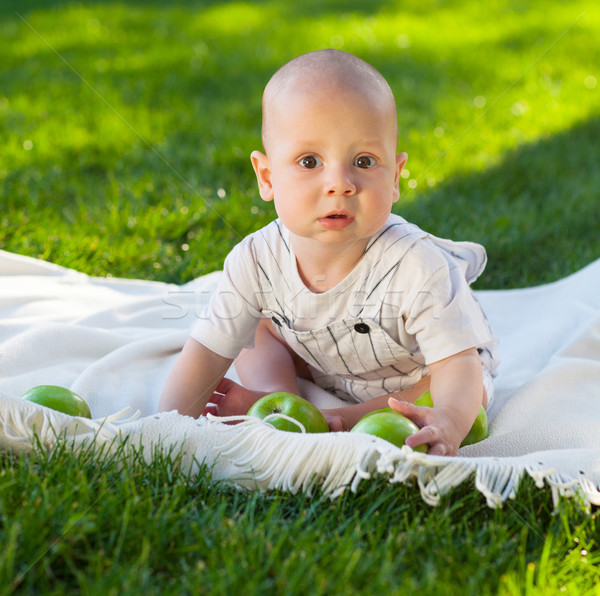 Happy baby boy with green apples on green grass in summer park Stock photo © dashapetrenko