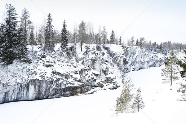 Tél tájkép hó fenyőfa copy space fa Stock fotó © dashapetrenko