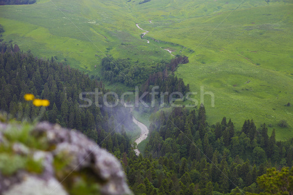 Stock photo: Valley the scenery is breathtaking, Lagonaki, Caucasus, Russia