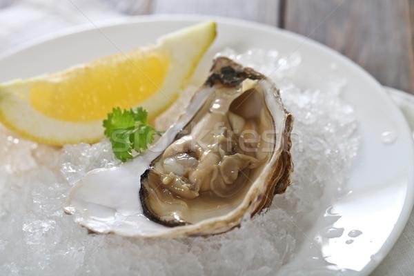 Fresh oyster platter  Stock photo © dashapetrenko