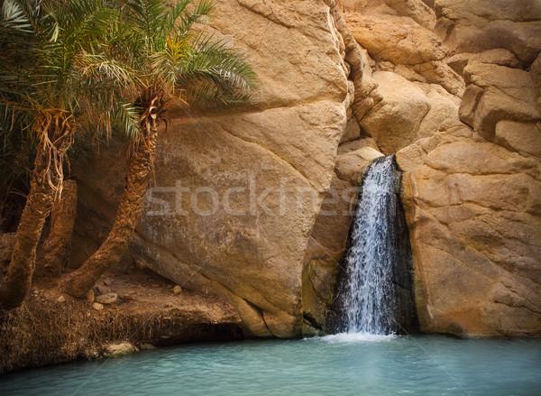 View montagna oasi sahara deserto Tunisia Foto d'archivio © dashapetrenko