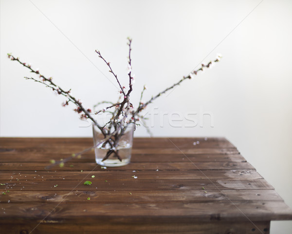 Sprig blossoming branch on wooden table  Stock photo © dashapetrenko