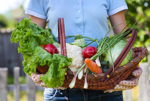 Kadın eldiven taze sebze kutu eller Stok fotoğraf © dashapetrenko