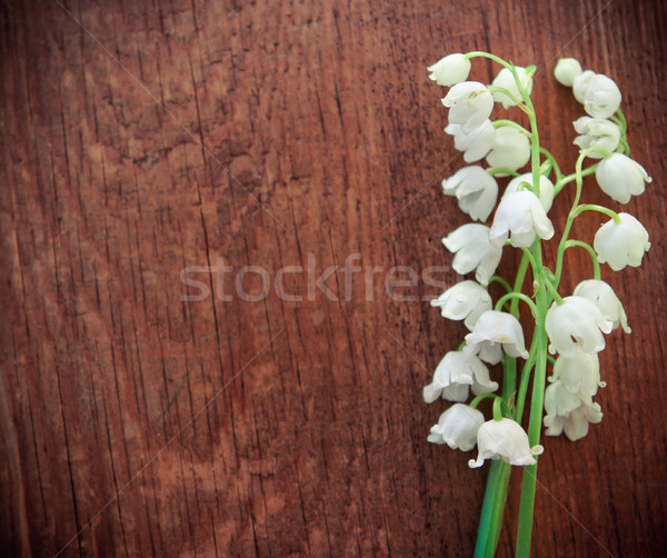 Lilies of the valley on wooden textured background Stock photo © dashapetrenko