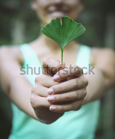 Woman holding Ginkgo biloba leaf in her hands Stock photo © dashapetrenko