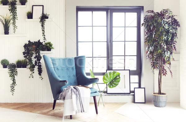 Moderno interior confortável sala de estar poltrona plantas Foto stock © dashapetrenko