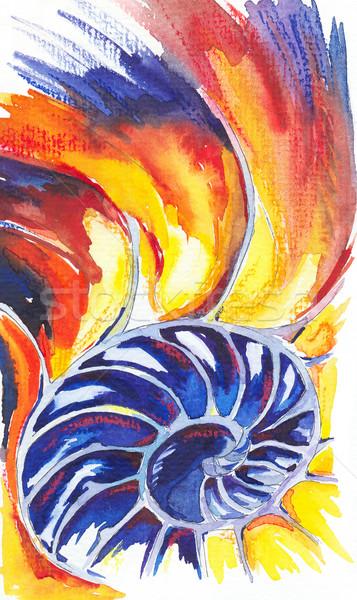 Nautilus Shell. Watercolors drawing Stock photo © dashapetrenko
