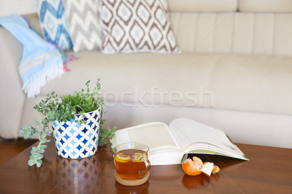 Pot with succulent plants and opened book with the tea on wooden Stock photo © dashapetrenko