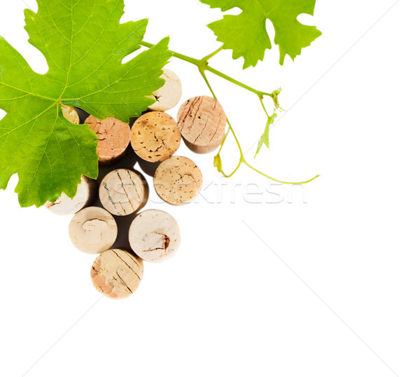 Dated wine bottle corks isolated on the white Stock photo © dashapetrenko