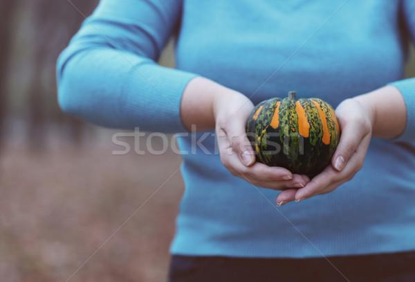 Woman holding orange and green pumpkin Stock photo © dashapetrenko