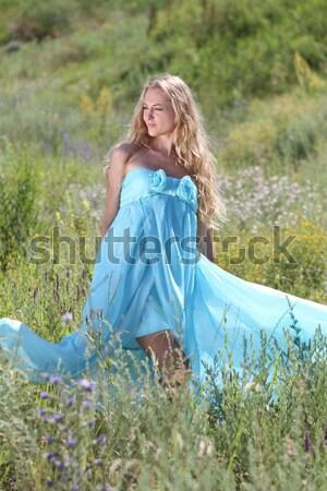 Romântico menina verão prado belo vestir Foto stock © dashapetrenko