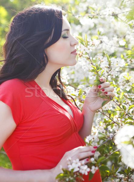 Foto stock: Retrato · belo · mulher · grávida · florescimento · primavera · vestido · vermelho