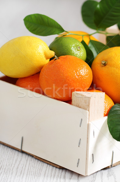 Stock photo: Fresh citrus fruits