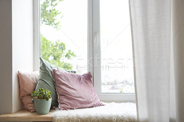 Square pillows, plaid and plant at the window Stock photo © dashapetrenko