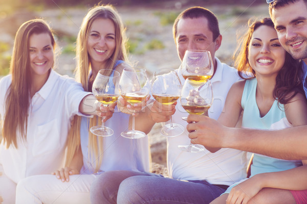 People holding glasses of white wine making a toast at the picni Stock photo © dashapetrenko