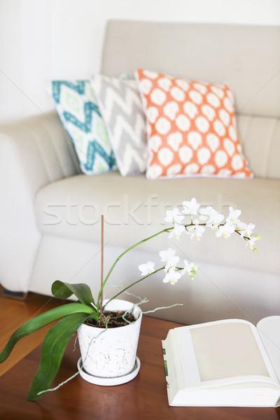 Schönen weiß Orchidee geöffnet Buch Holztisch Stock foto © dashapetrenko