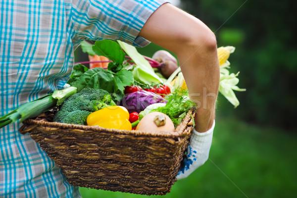 Wooden box filled fresh vegetables Stock photo © dashapetrenko