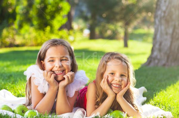Feliz sonriendo ninos jugando familia picnic Foto stock © dashapetrenko