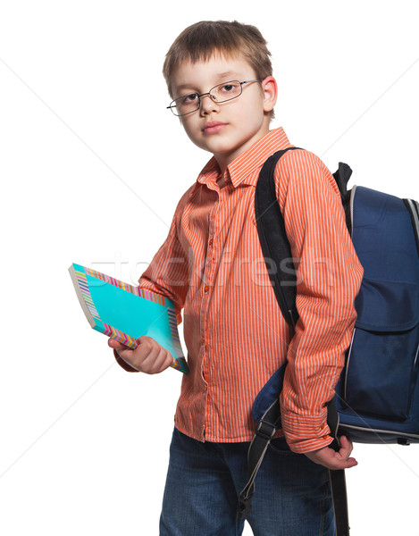 Schoolchild in glasses  Stock photo © dashapetrenko