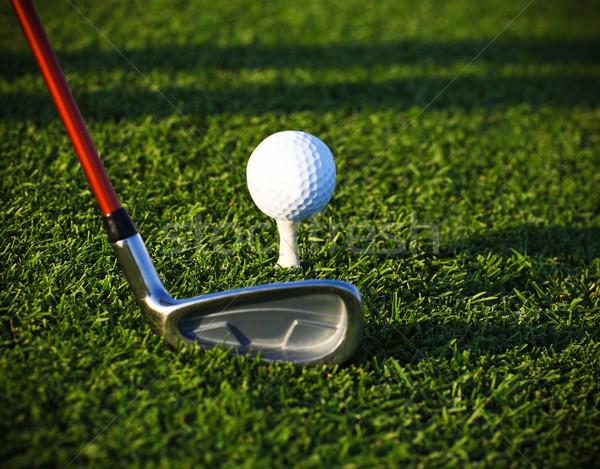 Golflabda sofőr golfpálya közelkép fény zöld Stock fotó © dashapetrenko