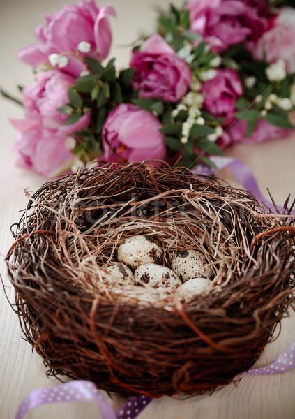 Fiori Pasqua nido uova rustico legno Foto d'archivio © dashapetrenko