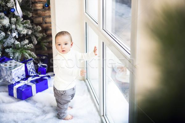 смешные один год ребенка мальчика ярко Сток-фото © dashapetrenko