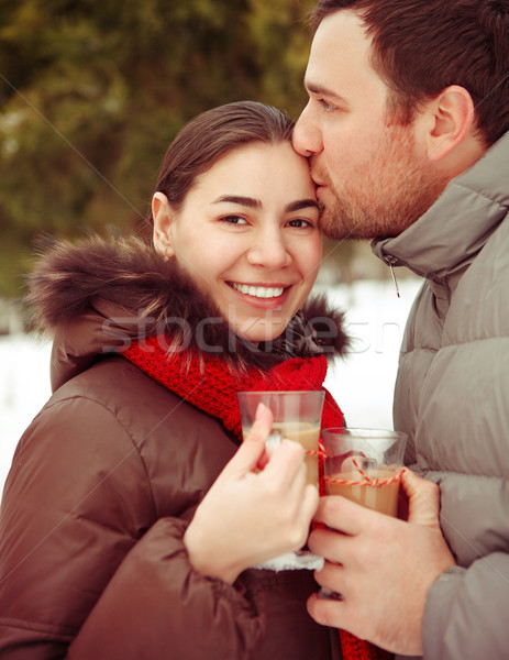 Heureux hiver parc maison Photo stock © dashapetrenko