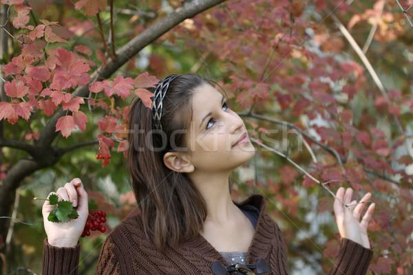 The girl near the bush Stock photo © dashapetrenko
