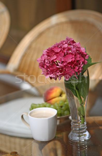 Déjeuner café fruits matin eau fruits Photo stock © dashapetrenko
