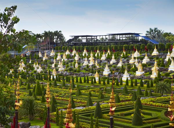 Tropicali giardino botanico Thailandia dettagli foresta giardino Foto d'archivio © dashapetrenko