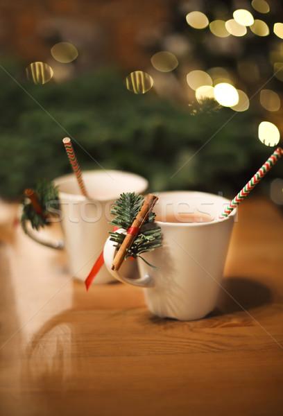 Sıcak çikolata tarçın Noel iki kış Stok fotoğraf © dashapetrenko