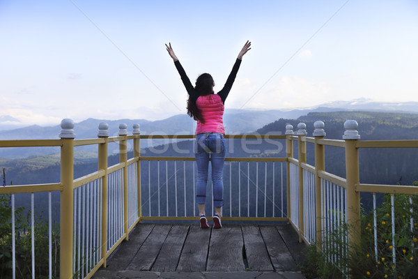 Young woman standing on viewing platform Stock photo © dashapetrenko