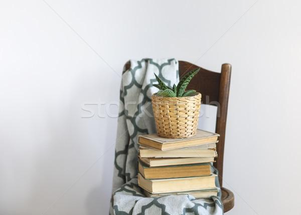 Stockfoto: Slaapkamer · interieur · groene · boeken