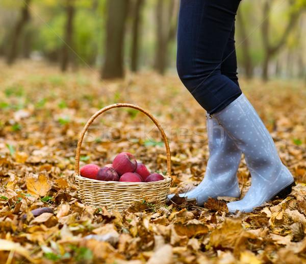 осень стране женщину плетеный корзины Сток-фото © dashapetrenko