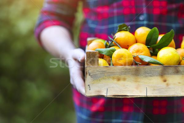 Caixa tangerina mãos homem camisas Foto stock © dashapetrenko