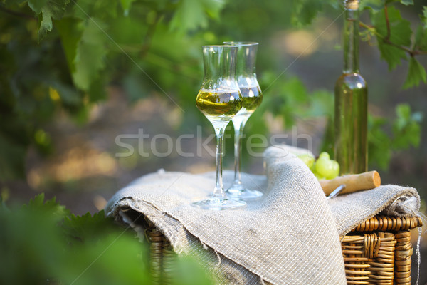 Bottle of liquor or  grappa and glasses with bunch of grapes  Stock photo © dashapetrenko