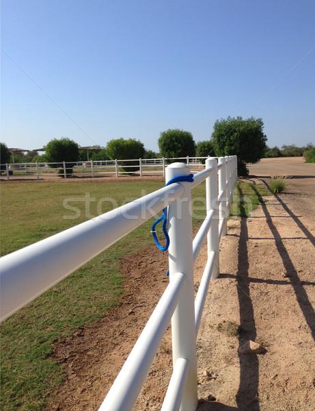 Witte rail hek gras bank blauwe hemel Stockfoto © dashapetrenko